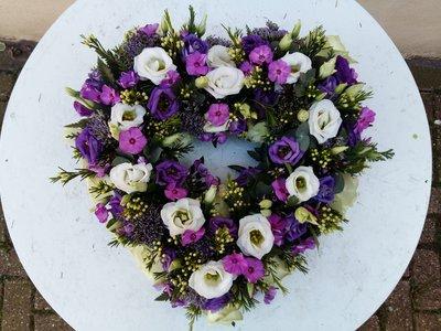 Open Hart lila